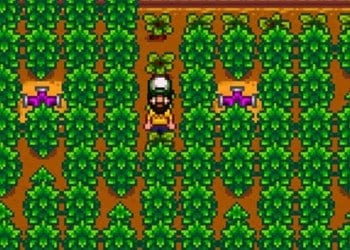 Stardew Valley cash crops